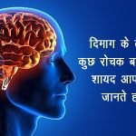 Amazing-Facts-About-the-Brain-in-hindi