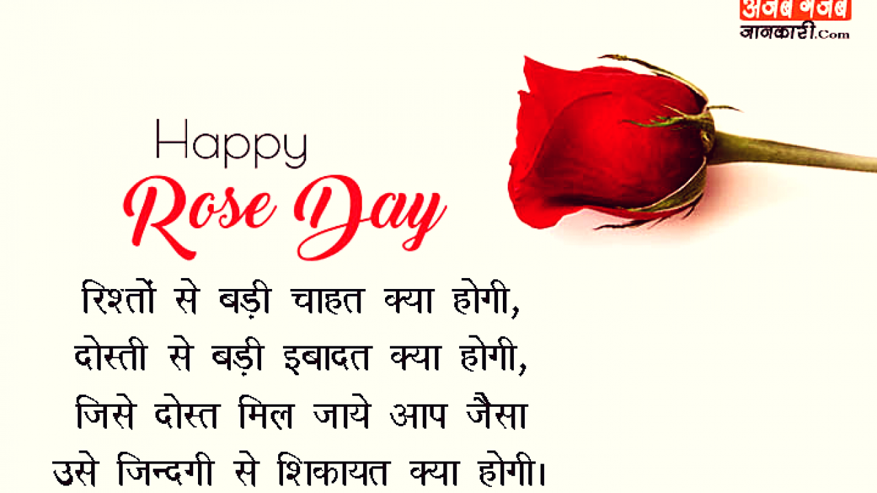 7th Feb Happy Rose Day Images With Shayari र ज ड पर