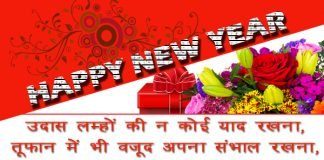 funny-new-year-shayari-in-hindi