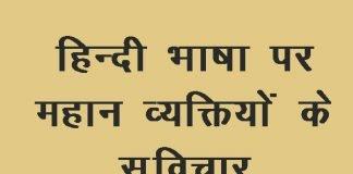 thought on hindi language