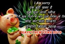 funny new year shayari in hindi
