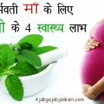 Benefits of Tulsi Leaves Basil during Pregnancy in Hindi