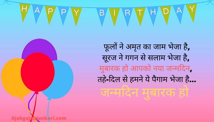 Happy Birthday Sister Quotes in Hindi
